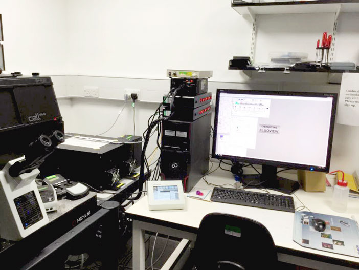 Olympus FV1200 Laser Scanning Microscope