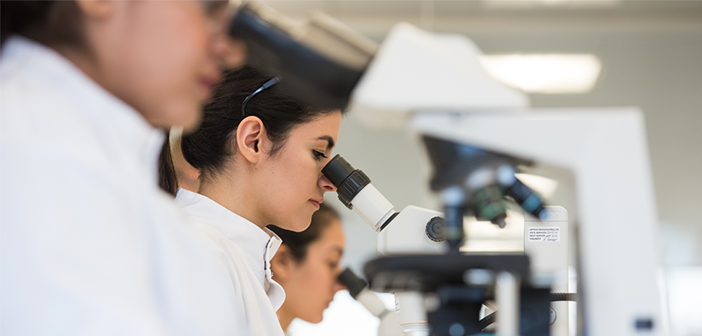 Researchers looking in a microscope