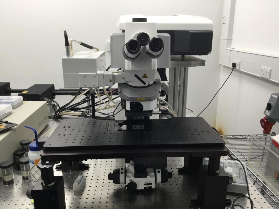 ZEISS LSM 880 NLO confocal Multiphoton microscope